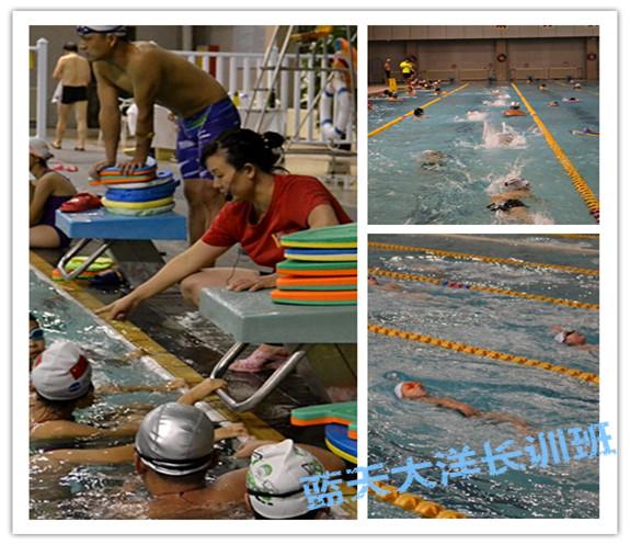 游泳培训长训班