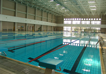西三旗儿童学游泳