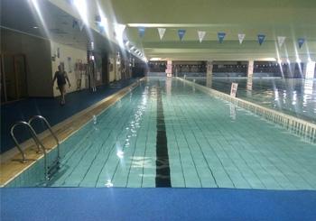 西三旗青少年学游泳